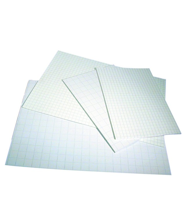 Exercise Paper A4 2 Hole Punched 5mm Squares